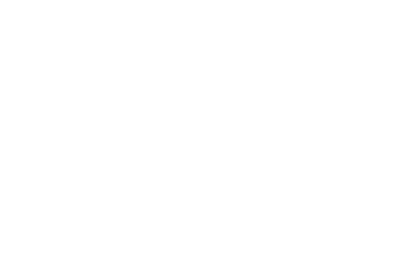 Wills & Wealth